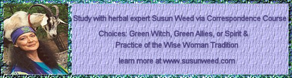 Herbal Medicine correspondence courses with Susun Weed