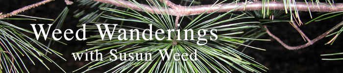 Weed Wanderings Herbal eZine with Susun Weed