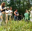 Herbal Students at the Wise Woman Center, Woodstock NY